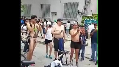 cocks  dicks  gay sex
